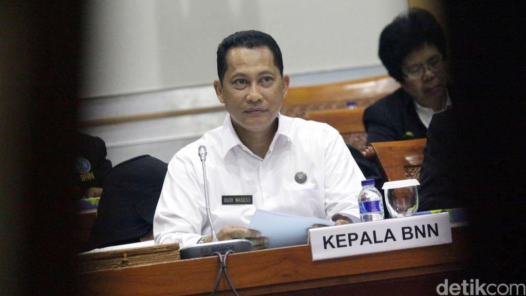 Video 2 Anggota DPRD Padang Pariaman Nyabu, Buwas: Kita Kejar Bandarnya