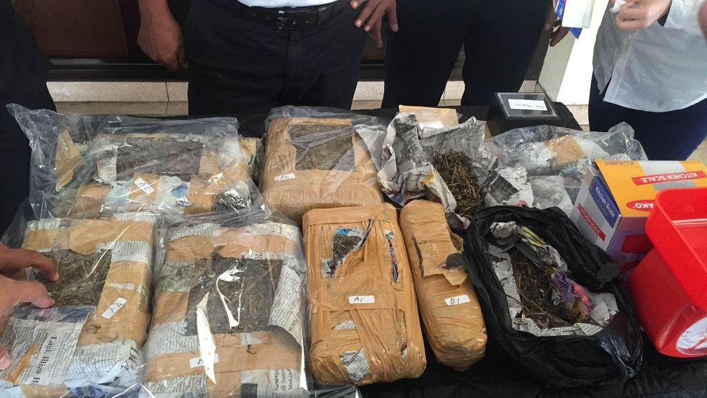 Simpan Ganja 4 Kg di Gerobak, 2 Pelaku Ditangkap Polisi