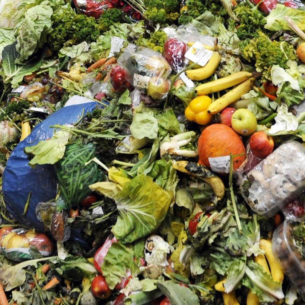 Gaya Hidup Generasi Y Australia Sebabkan Limbah Makanan Terus Meningkat