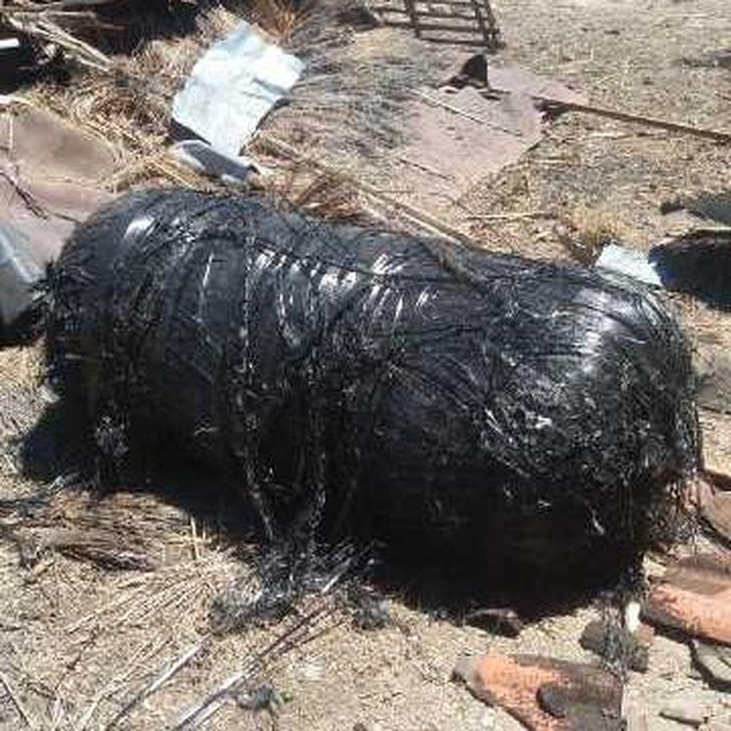 Polisi Uji Benda Misterius di Sumenep: Kulit Penutup Tabung Ternyata Kebal Api