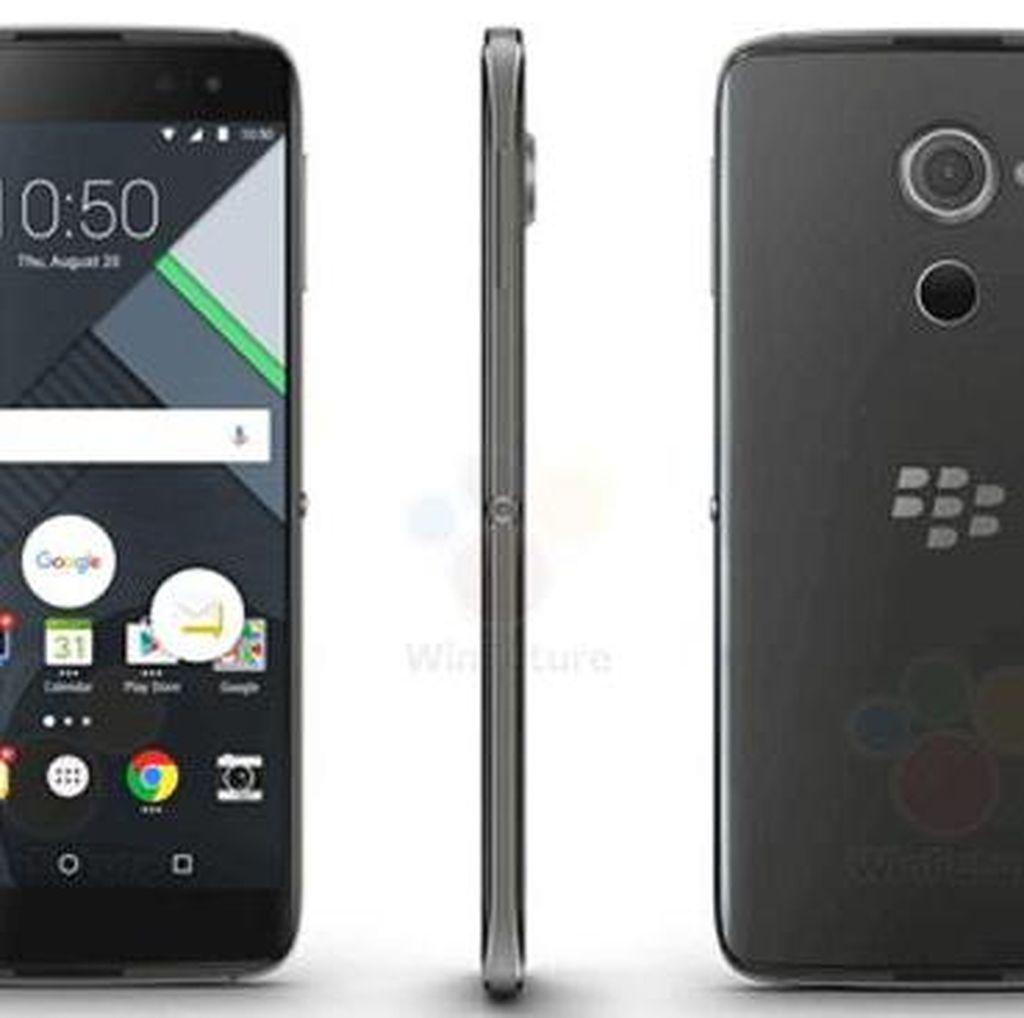 BlackBerry Android Argon Unjuk Gigi