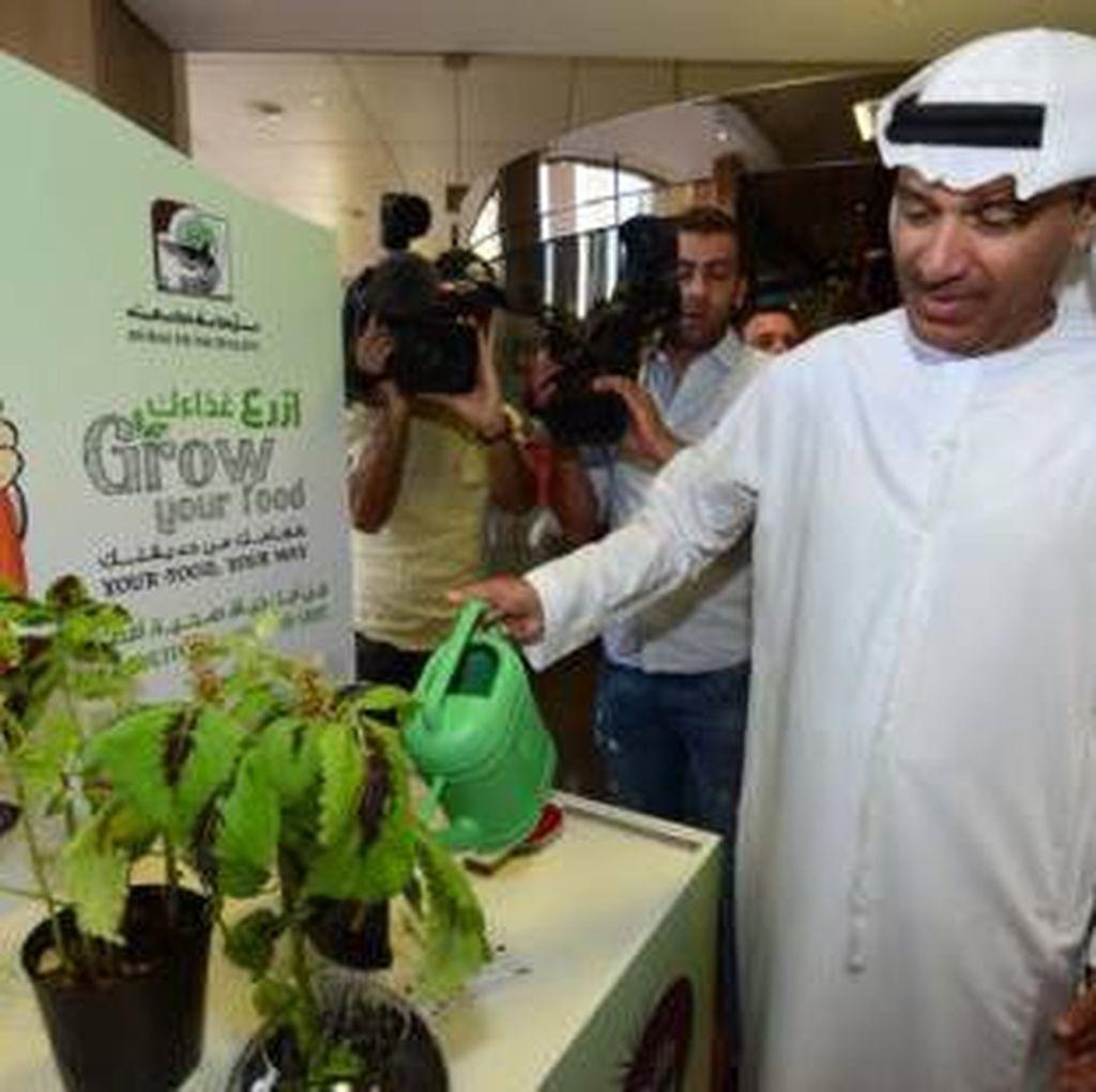 Dubai Kampanyekan Tanam Sayur Sendiri Berhadiah Uang Tunai