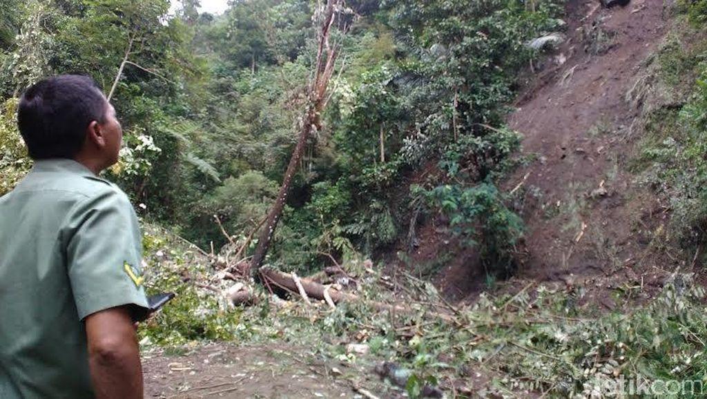 Kawasan Hutan Wisata Telogo Muncar di Lereng Merapi Ditutup Akibat Longsor