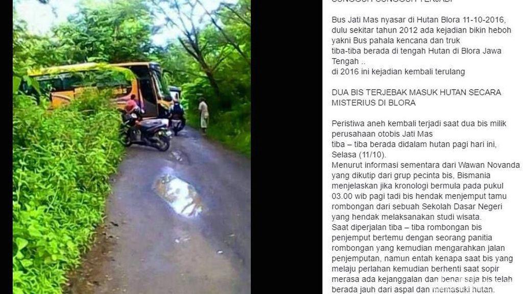 Misteri dan Fakta tentang Bus yang Mendadak Ada di Tengah Hutan Blora