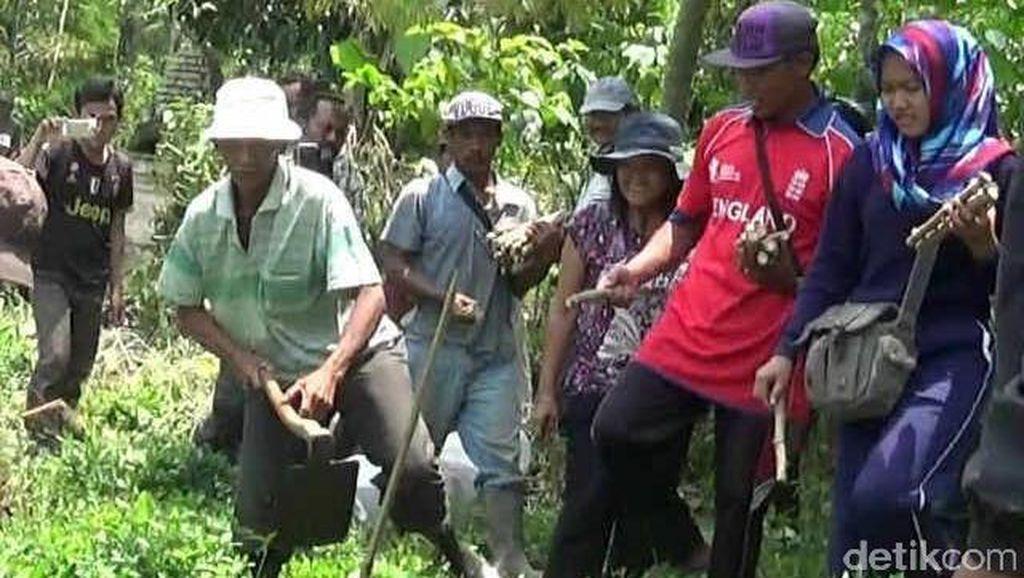 Duduki Lahan PT Dewi Sri, 11 Petani Ditetapkan Sebagai Tersangka