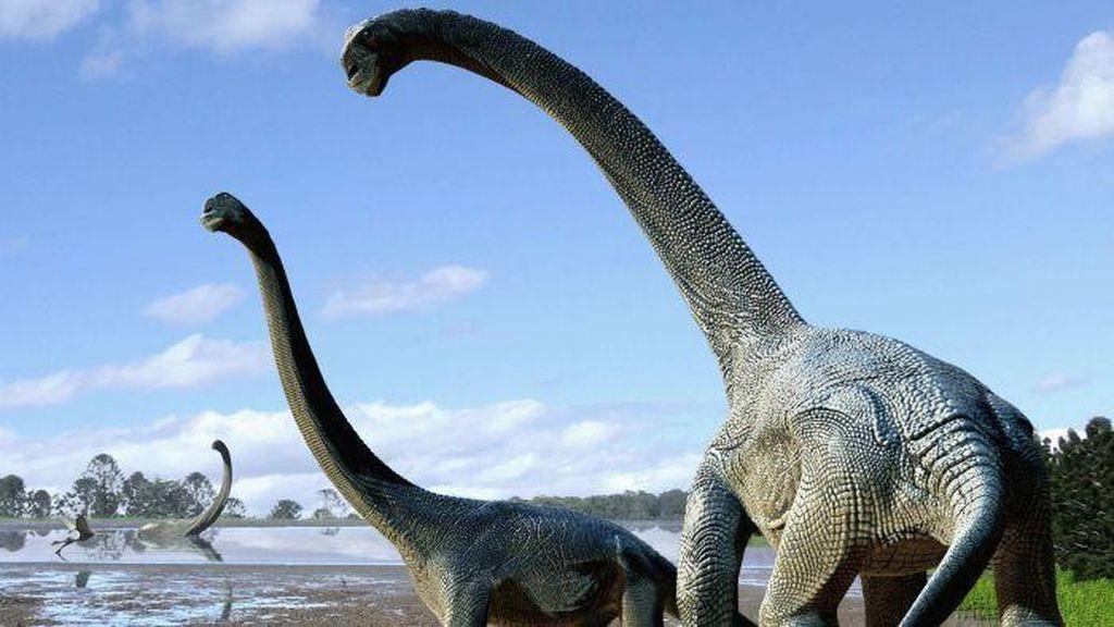Ditemukan di Australia, Dinosaurus Titanic Seukuran Setengah Lapangan Basket
