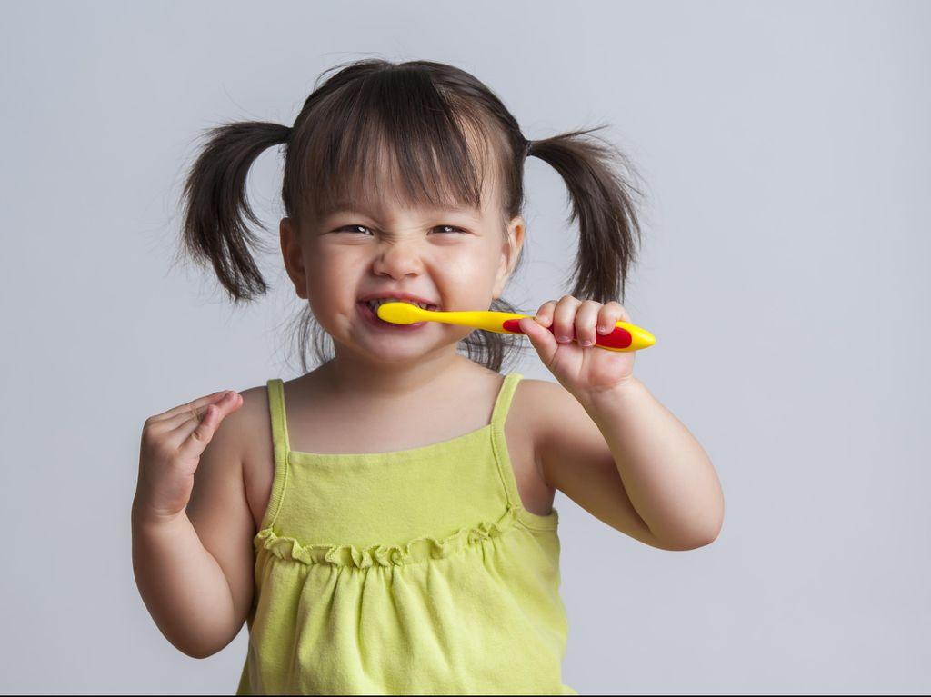 Hai Bunda, Yuk Lakukan 5 Tips Ini Agar si Kecil Rajin Menyikat Gigi