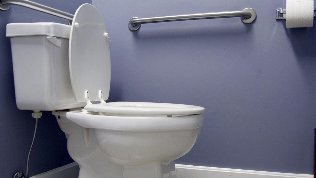 Waspada Bencana, Tisu Toilet Laku Keras di Jepang
