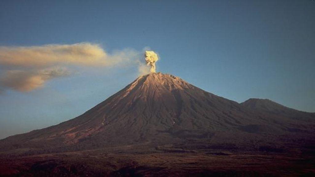 Gunung Semeru Semburkan Awan Panas