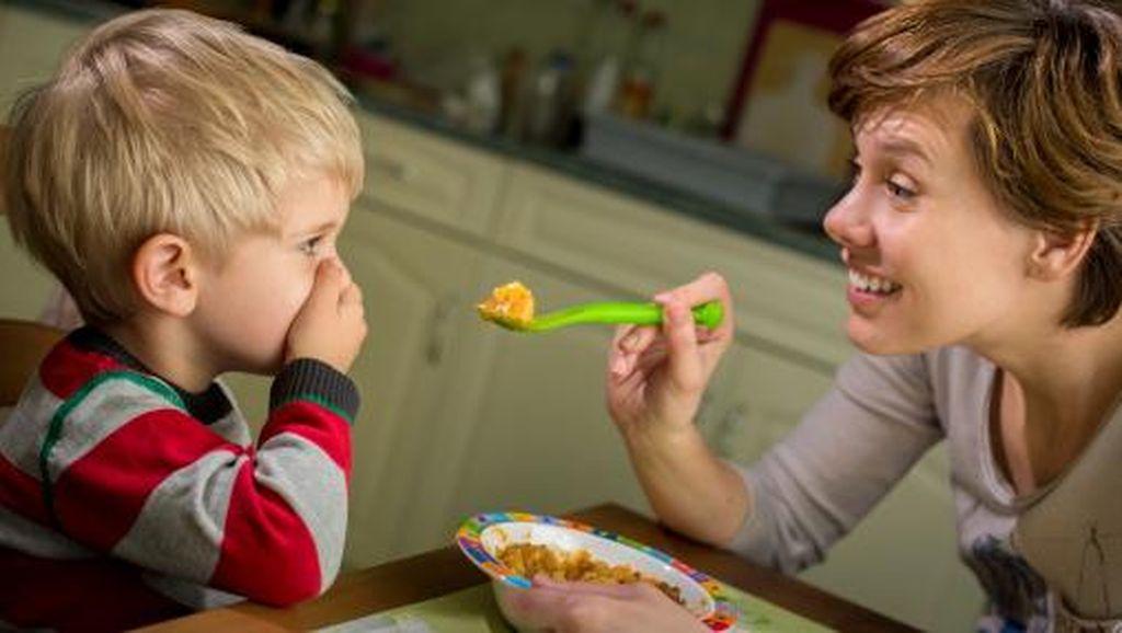 Saat Anak Susah Makan Jangan Menyerah, Itu Tantangan Bagi Orang Tua