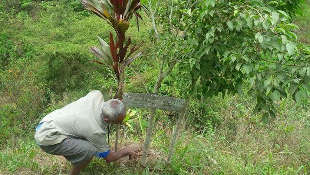 Kisah Hebat Mbah Sadiman, Pahlawan Penghijauan dari Wonogiri