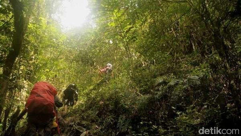 Tentang Latimojong, Gunung Tertinggi di Sulsel Lokasi Aviastar Jatuh