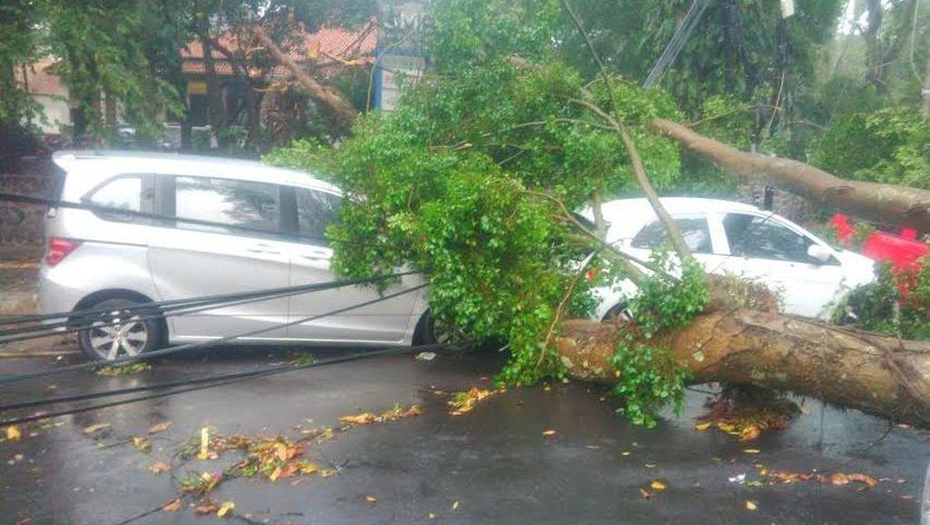 Bandung Hujan Badai, Ini Penampakan 6 Mobil Tertimpa Pohon di Depan Kampus ITB