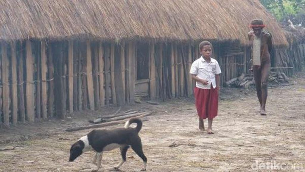 Alasan Ini yang Menjadikan Beberapa Warga Papua Enggan Ber-KB