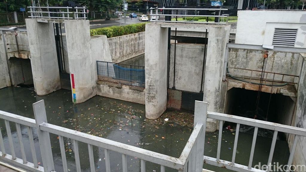 Ikan Mati di Sungai Epicentrum Bisa Sampai 1 Mobil Pikap