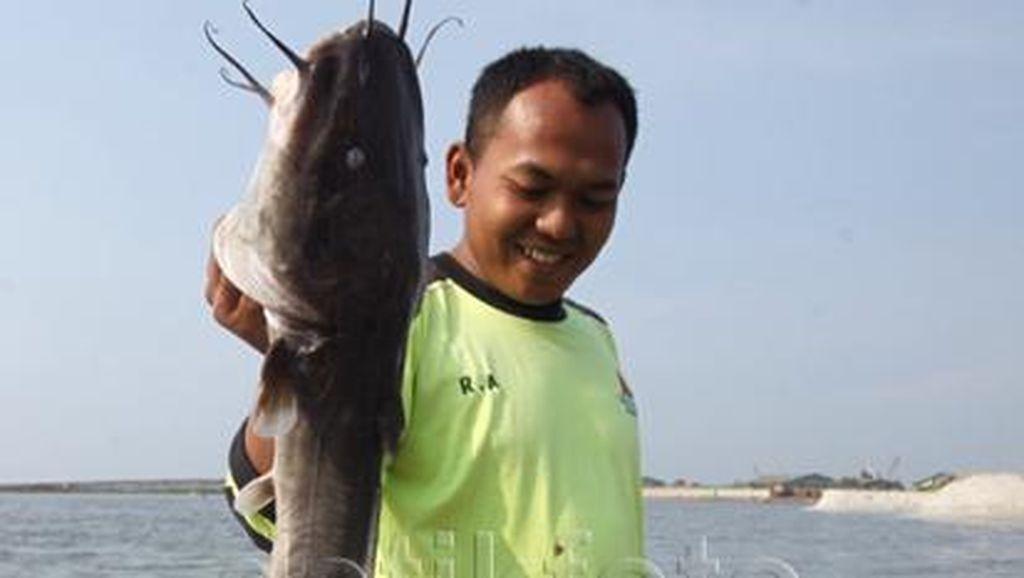 Ikan Lele Besar ini Juga Ditemukan Mati di Pantai Ancol
