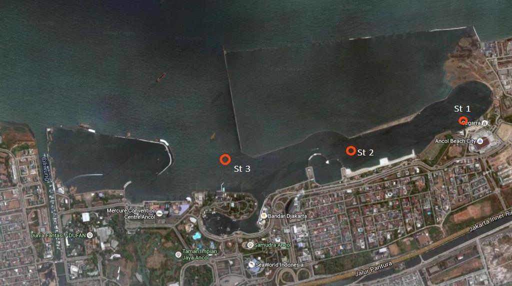 Ini Hasil Uji Lab LIPI Terkait Kasus Ribuan Ikan yang Mati di Pantai Ancol