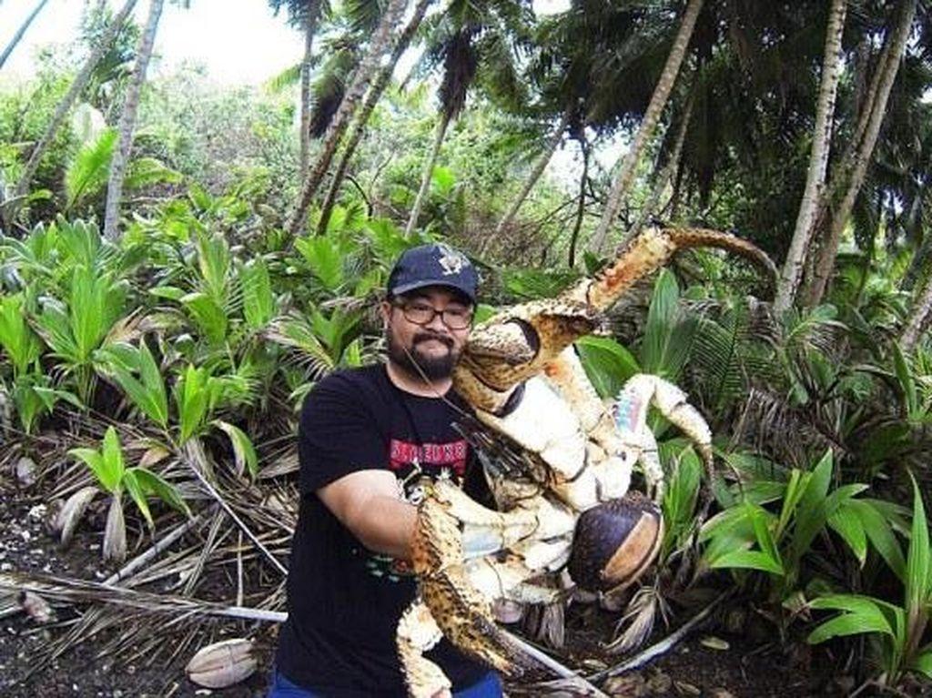 Turis Australia Nekat Berfoto dengan Kepiting Raksasa