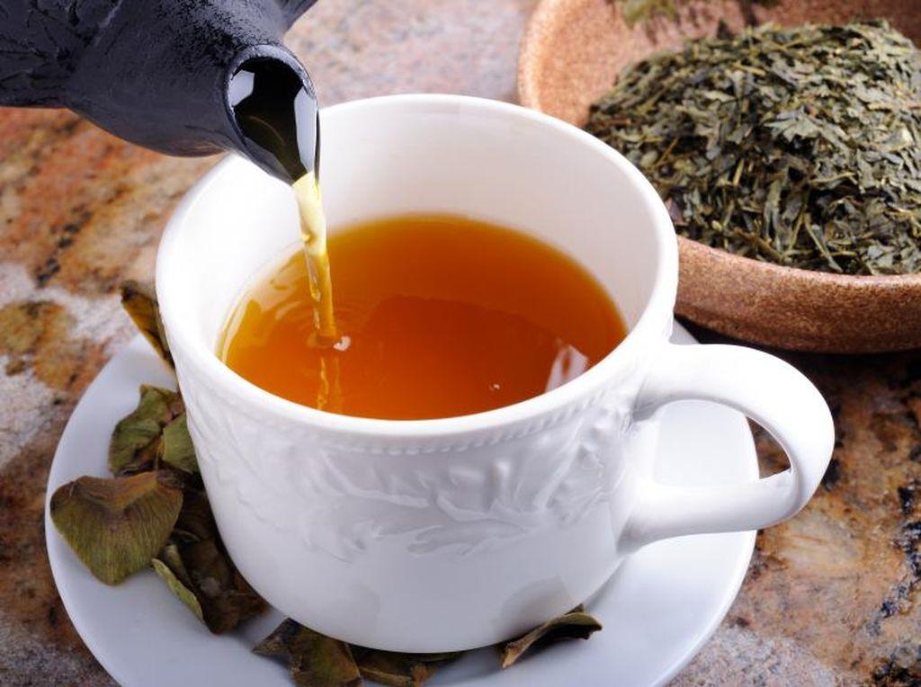 Saat Ingatan Agak Menurun, Herba-herba Ini Terbukti Bisa Membantu