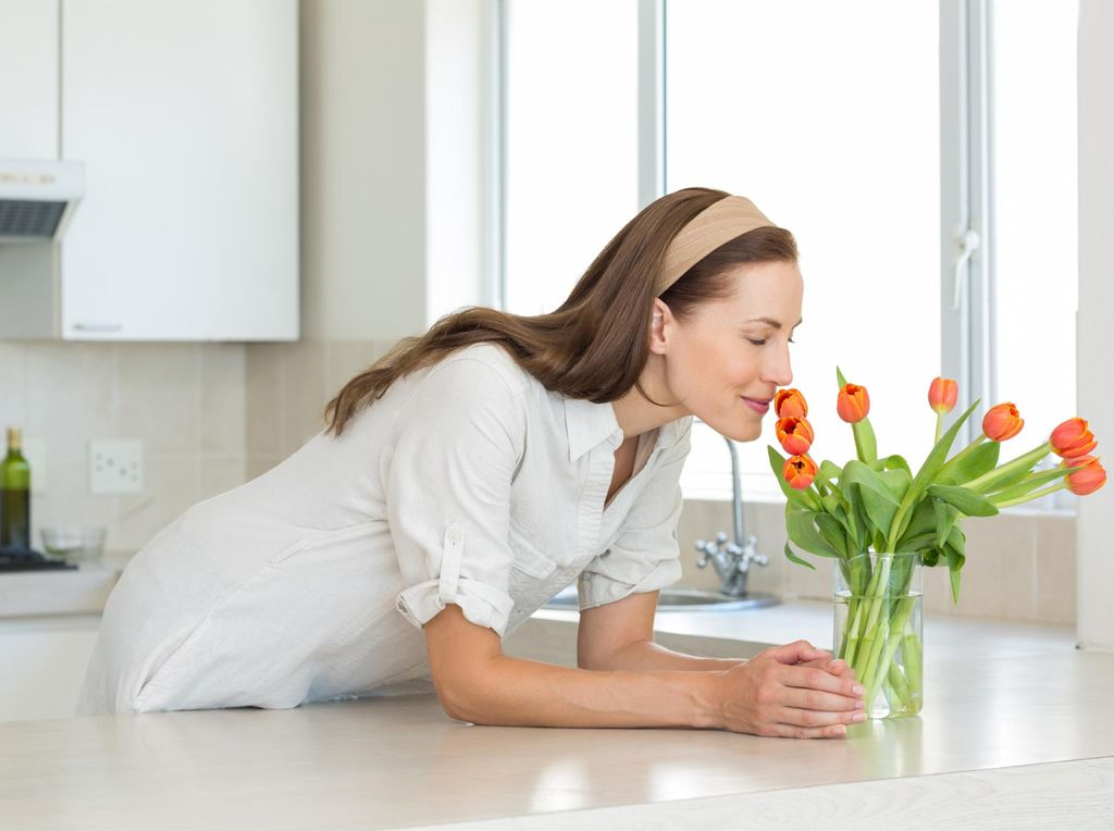 Tips Menata Tanaman di Dapur Rumah Anda