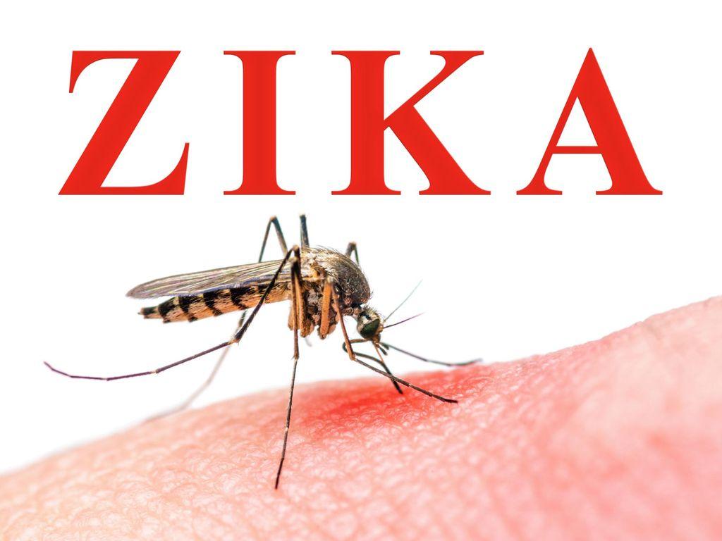 Ahli Mikrobiologi: Virus Zika di Indonesia Tidak Seberbahaya di Brazil