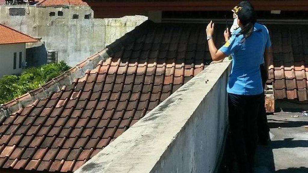Saat Bule Australia Mengaku Spiderman di Bali Hendak Lompat dari Atap Hotel