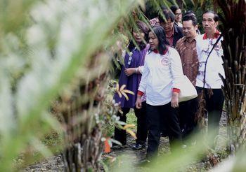 Jokowi Kunjungi Pasar Cipanas