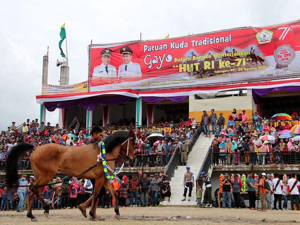 Lewat Pacuan Kuda Gayo, Aceh Incar Turis Mancanegara