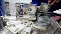 Dolar AS Naik ke Rp 13.019