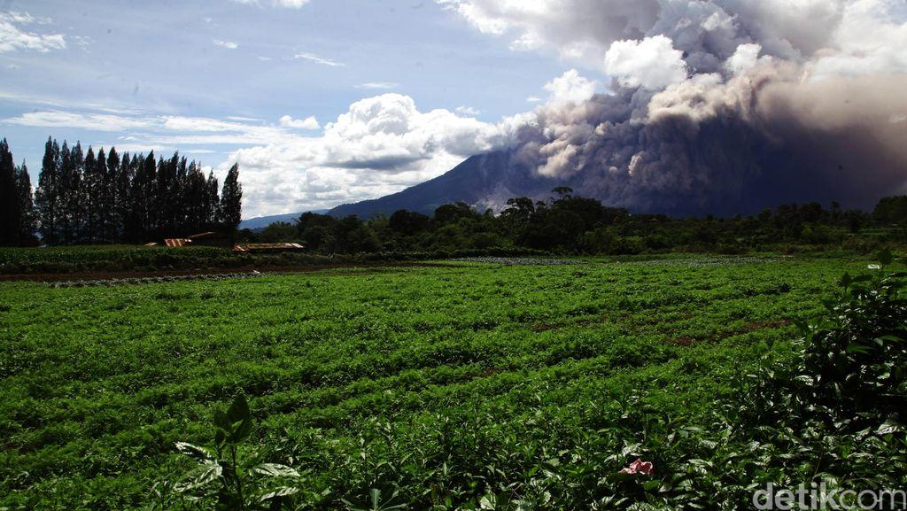 Lava dan Banjir Lahar Dingin di Gunung Sinabung, Warga Diimbau Menjauh