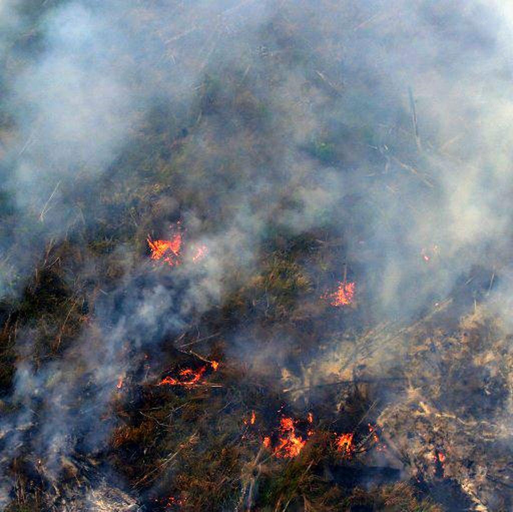 Pemadaman Api di OKI Lambat karena Lahan Gambut yang Dalam