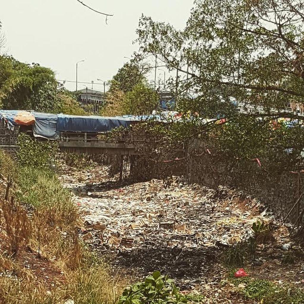 Tolong, Sungai di Cibinong ini Sekarat karena Sampah