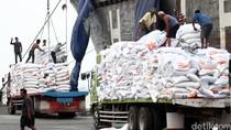 Impor Beras Naik Hampir 5 Kali Lipat, Ini Respons Mentan