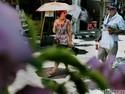 Ini Tantangan Pemerintah Genjot 20 Juta Turis Asing Datang Ke Indonesia