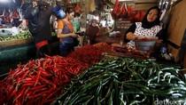 Harga Cabai di Jakarta Tembus Rp 60.000/kg, di Petani Rp 35.000/Kg