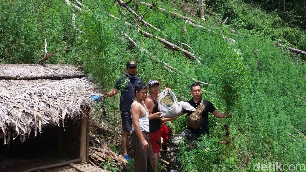 Kapolda Aceh yang Baru Bicara Tentang Ladang Ganja dan Penyelundupan Sabu
