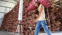 Curhatan Pedagang Bawang: Gimana Mau Murah, Saya Belinya Rp 36.000/Kg
