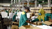 Investor Takut Bangun Pabrik di Luar Jawa