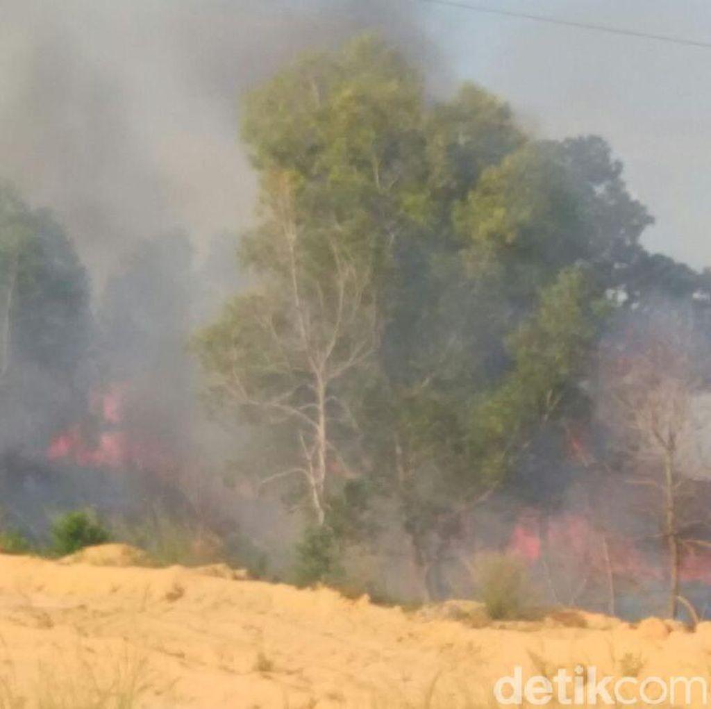 44 Titik Api Penyebab Udara Buruk di Riau