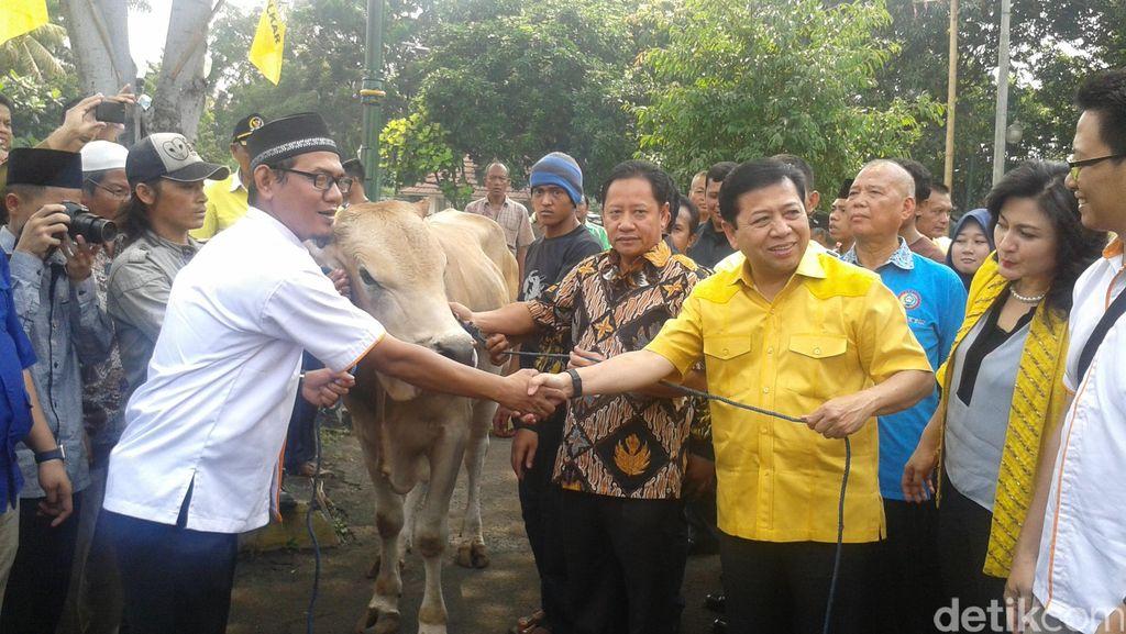 Lepas Sapi Kurban, Novanto Bersyukur Gugatan Dikabulkan MK