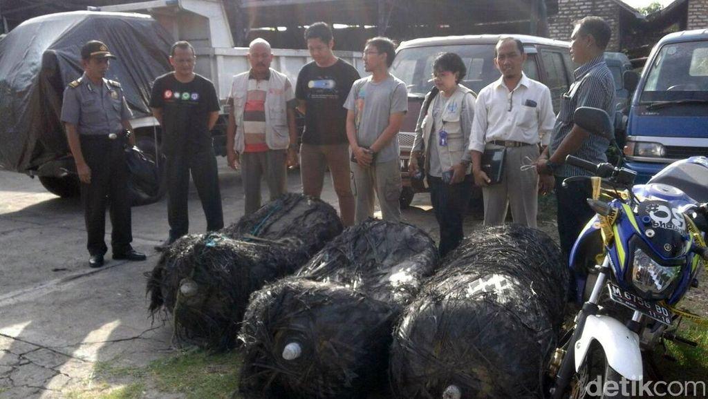 LAPAN: Beberapa Hari ke Depan Akan Ada Lagi Sampah Antariksa yang Jatuh