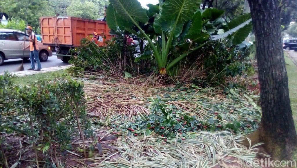 Taman Depan Balai Kota Rusak Berat, Kadis Taman: Kerugian Ratusan Juta Rupiah