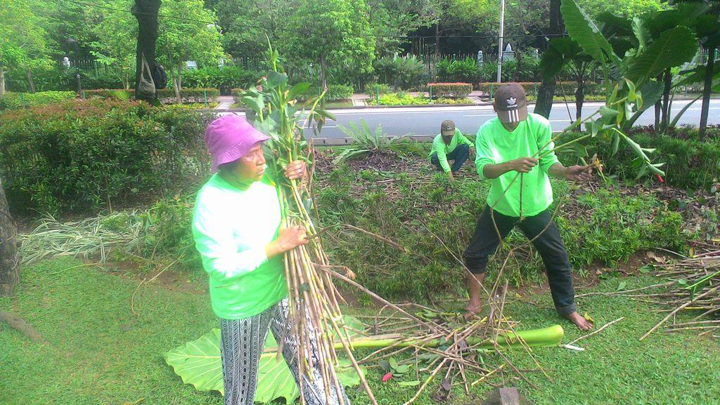 Bertemu Lagi dengan Tuti, Pekerja Taman yang Pikat Ahok karena Usir Pendemo