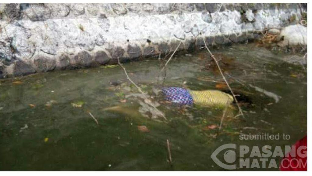 Mayat Perempuan di Telaga Ngebel Ponorogo Berkaos Kuning dan Celana Biru