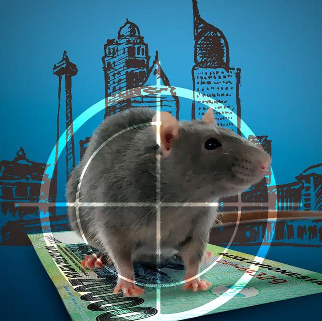 Wagub Djarot: Anggaran untuk Basmi Tikus Rp 20 Juta per Kecamatan