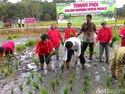 Mentan Amran Marahi Petani yang Malas Bertani