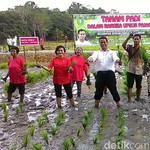 Mentan Amran Ingin Kalimantan Mandiri Pangan