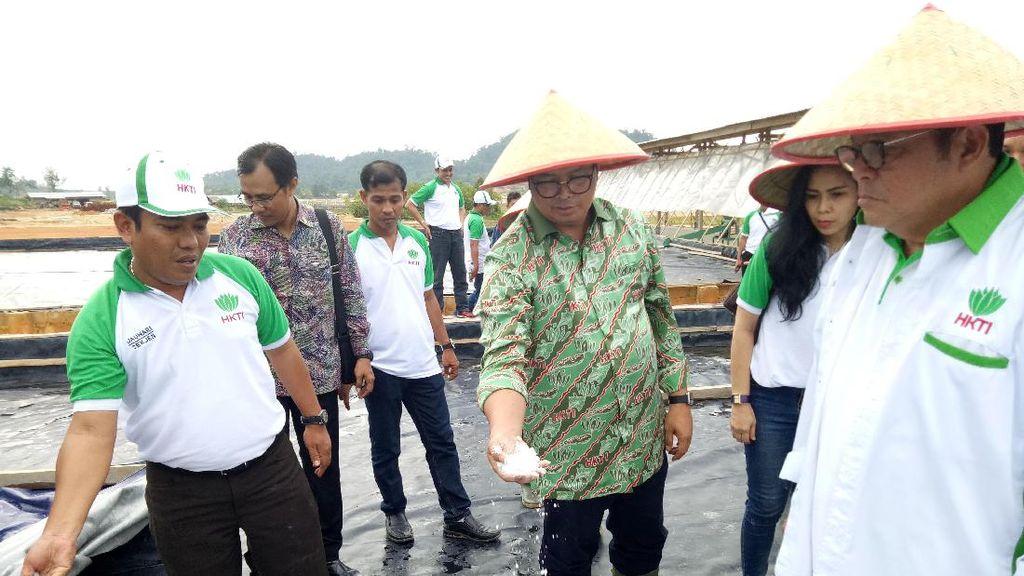 Menengok Lahan Pertanian Terpadu di Lahan Eks Tambang Timah Bangka