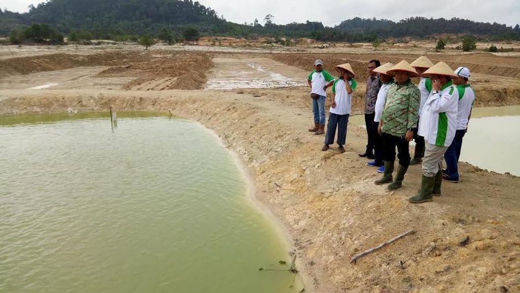 Kunjungi Belitung, Pimpinan MPR Sambangi Eks Lahan Tambang Timah di Bangka