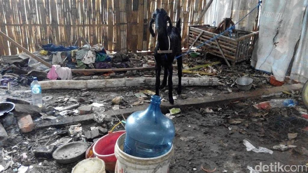Kondisi Rumah Pelajar Tewas Korban Kecelakaan di Ponorogo Memprihatinkan
